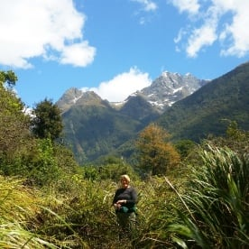 hollyford valley hiker