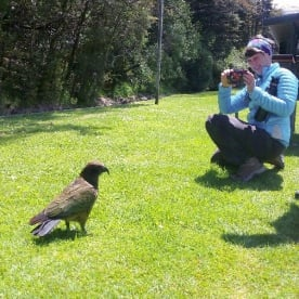 kea and hiker