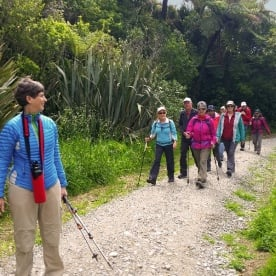 hiking group in punakaiki