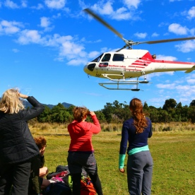 9 helicopter tour hollyford valley fiordland2