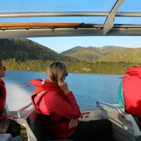 9 jetboat hollyford valley fiordland southland