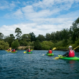 The Team Kayaking the Waikato River