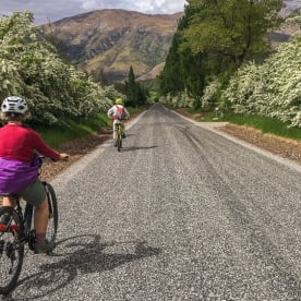 Biking around Hawthorn trees at Otago, New Zealand
