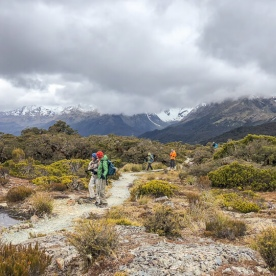 Walking the Key Summit Lookout Trail Lake, Fiordland New Zealand