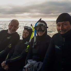 Group ready to swim with dolphins at Akaroa, Canterbury New Zealand