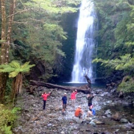 hikers at little homer falls on the hollyford track