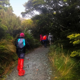 Setting off on the Hollyford Track.