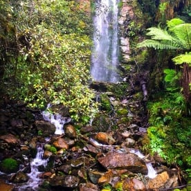 Waterfalls on the Hollyford Track