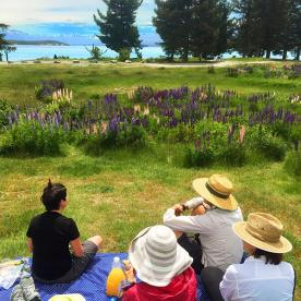 Picnic at Lake Pukaki
