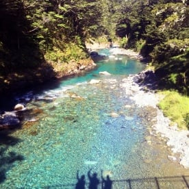 shadow at routeburn track rivers bridge