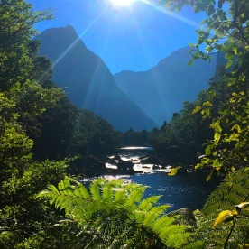 A picture perfect view of Milford Sound