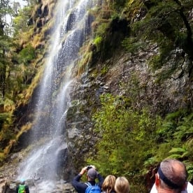 Falls on Routeburn Track