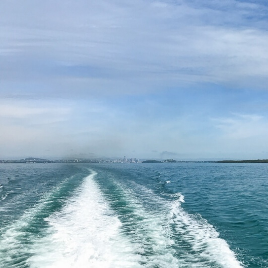 Cruise from Auckland to Waiheke Island, New Zealand