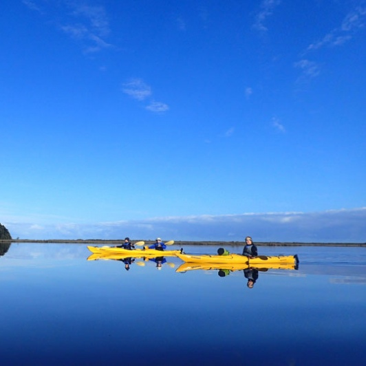 calm waters kayaking okarito lagoon