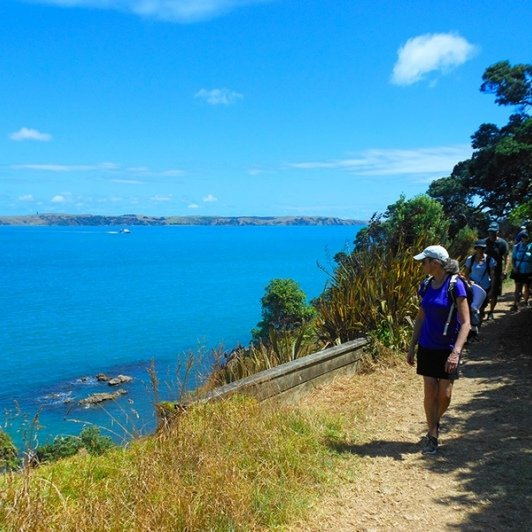 Walking along the Waiheke Island Coast
