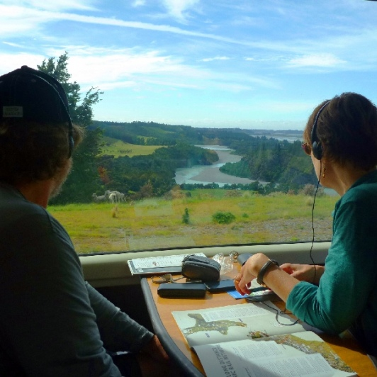 views from the tranzalpine train