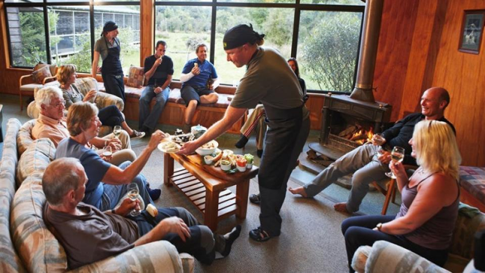 Guided walks on the hollyford track