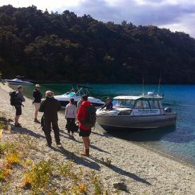 Heading off to the Wildlife Sanctuary at Mou Waho Island