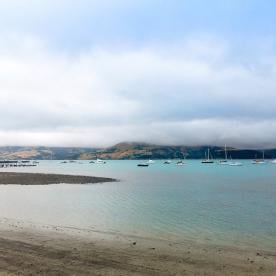 The cute seaside village of Akaroa