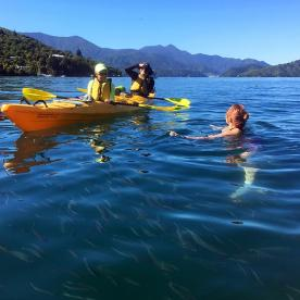 Swimming with the fish in Queen Charlotte Sound