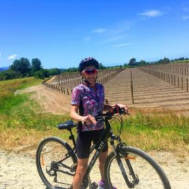 Cycling around the gorgeous Marlborough Vineyards