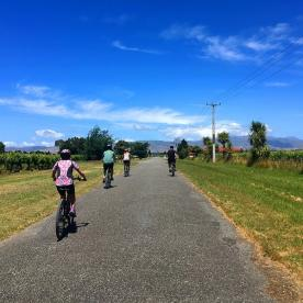 Cycling in Marlborough Vineyards