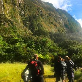 Starting out on the Milford Track. Our guides bringing up the rear with the supplies!