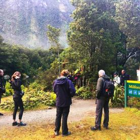 Our 'World Heritagers' walking the Milford Track