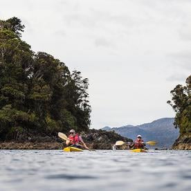 short south kayak milford sound