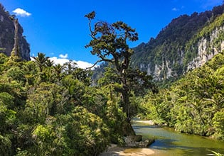 world heritage paparoa national park
