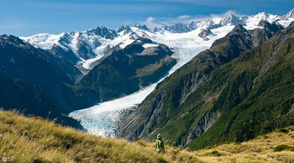 Fox Glacier New Zealand  city pictures gallery : Wild about New Zealand the West Coast'   New Zealand Trails